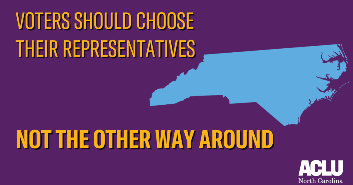 Image: Voters should choose their representatives